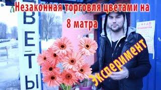 Продажа цветов 8 марта | Эксперимент(Решили продавать цветы на 8 марта на улице, вот что из этого вышло, интересный опыт, необычный эксперимент...., 2016-03-10T19:36:33.000Z)