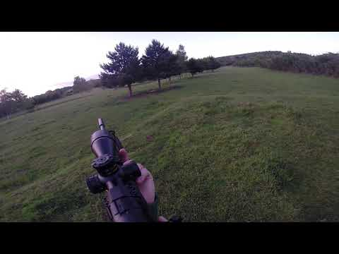 17 HMR Browning T Bolt Vs The Rabbits  2