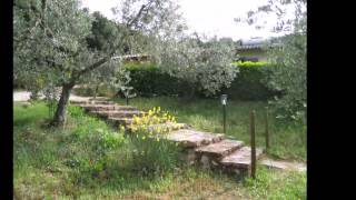 Green Paradise - Camping Il Falcone