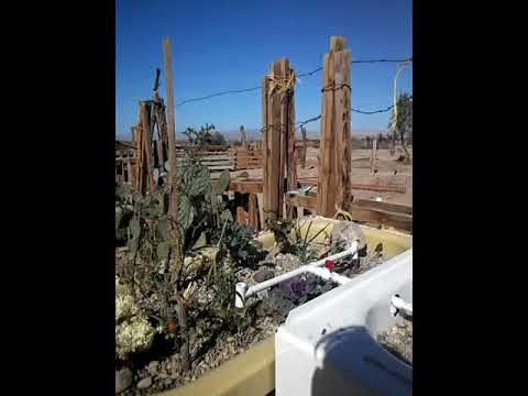 Camp Goonies slab City off grid living sustainable living