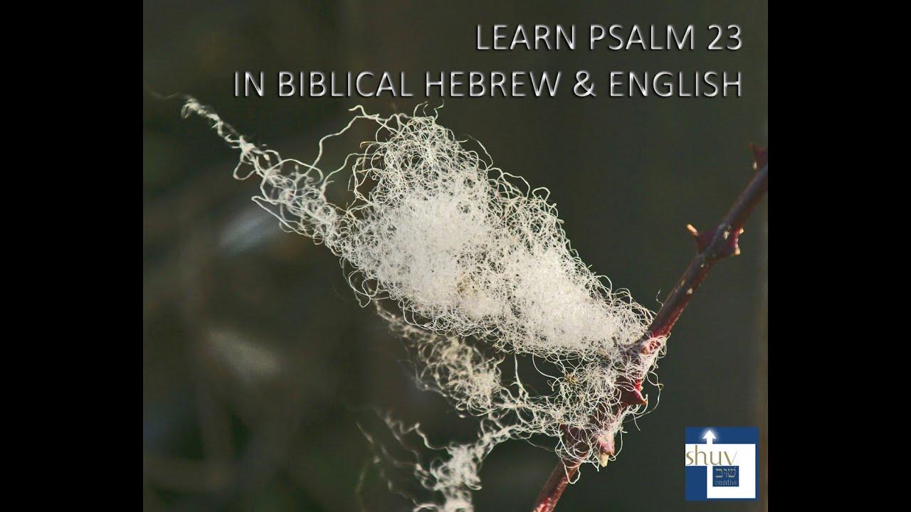 Hebrew classes New York City - Learn to speak Hebrew ...