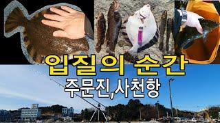 [바다낚시]강릉 원투낚시 입질,랜딩 영상 모음(사천해변…
