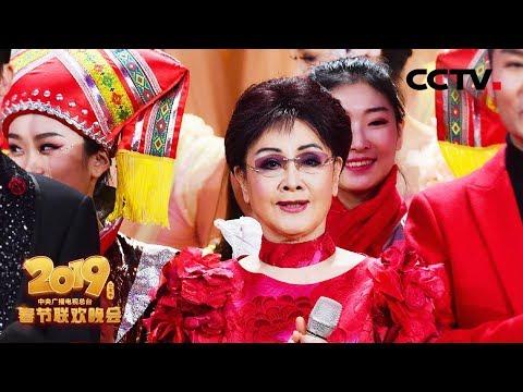 [2019央视春晚] 分集回顾:2019年中国CCTV春节联欢晚会 高清现场