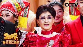 [2019央视春晚] 结尾歌舞《难忘今宵》 演唱:李谷一 刘和刚 王莉 汤非(字幕版)| CCTV春晚