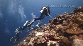 Palau (Teaser in HD)