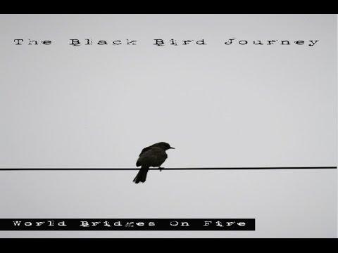 World Bridges On Fire - The Black Bird Journey [Full Album]