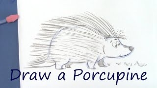 Draw a Cute Porcupine - Cartoon Animals for Beginners