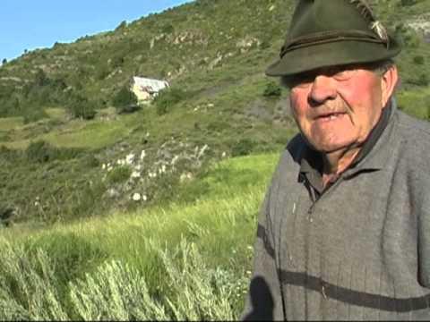 Pastre alh país dels Chats (Berger au pays des Chats) - part 1/2 - Ilònsa (06)