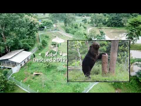 Stunning New Endangered Wildlife Sanctuary Laos