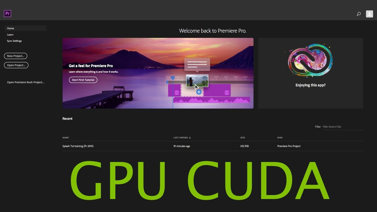 Install GPU Acceleration (CUDA) Drive in Premiere Pro 2019 | EVGA GTX 1070  ti