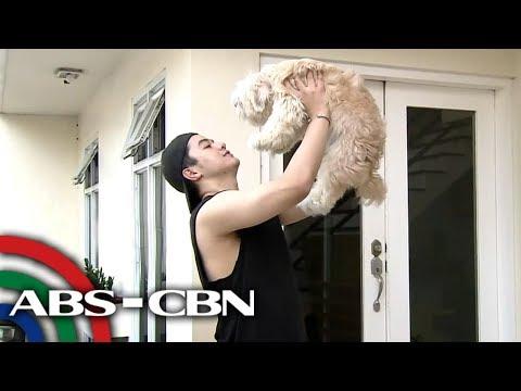 Shaira the dancing dog ni Hashtag CK | Rated K
