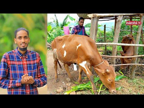 MANZI ahawe inka ebyiri👏MAMA yamutunguye i Kampala 😊BYAMURENZE yenda kurira|Ubuzima bwahindutse...