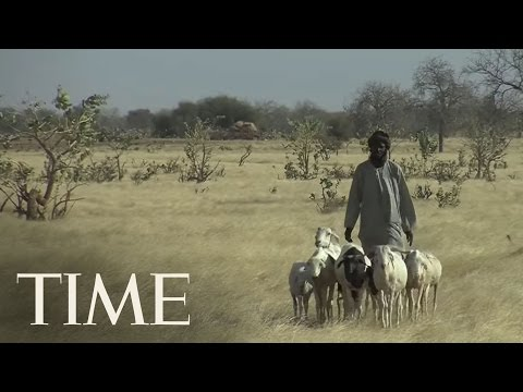 """Africa's Ambitious """"Great Green Wall""""   TIME"""