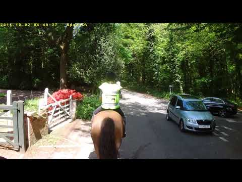Why motorists should slow down and give horse riders a wide birth