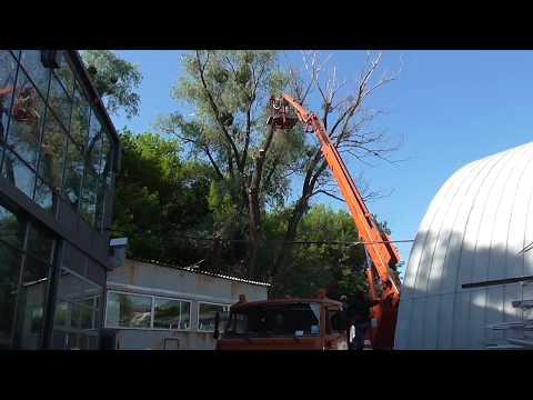 Автовышка 28 метров Киев обрезка деревьев