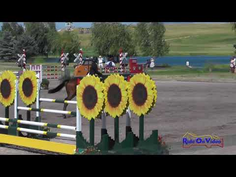 087S Erin Sylvester on Paddy the Caddy CCI3* Show Jumping Rebecca Farm July 2017