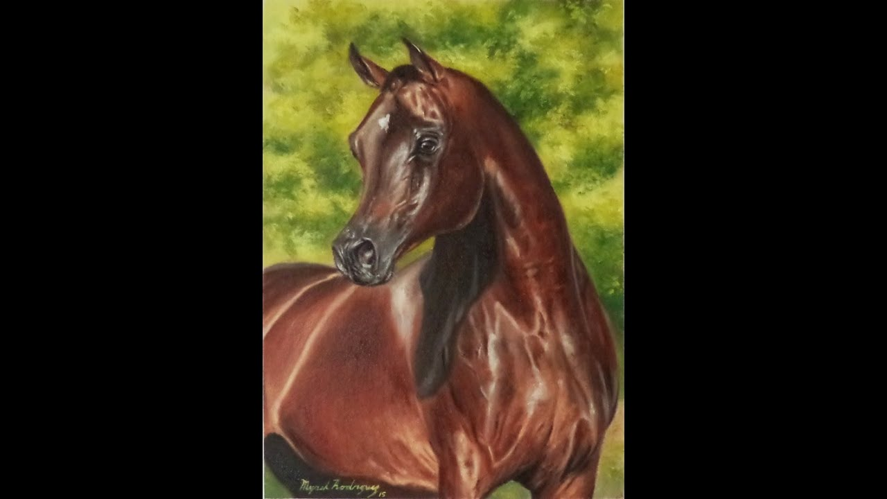Caballo árabe, óleo sobre tela / Arabian horse, oil on ...