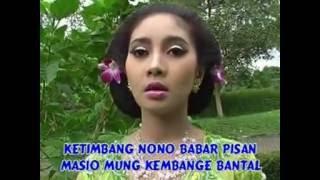 Download lagu turu nang dadane