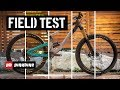 Stumpjumper vs Remedy vs Process vs Bronson vs SB150 | 2018 Pinkbike Field Test