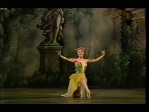 9  wonderful  female  classical ballet  variations