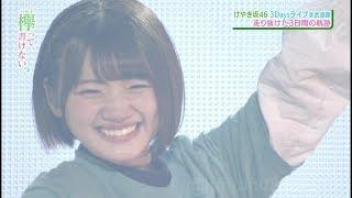 ひらがなけやき - 武道館 Live 3Days - けやき坂46 - 欅坂46.