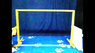 Wide Cat & Dog Gate : Assembly Video By Rover Company