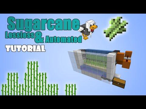Minecraft 1.11 - Sugarcane Farm - Lossless & Automated