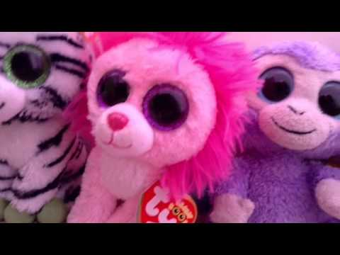 ebabd8f9a42 My Beanie Boo Collection! 102 Beanie Boos!
