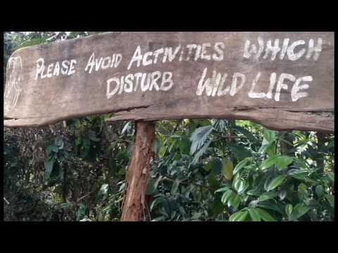 konni ecotourism
