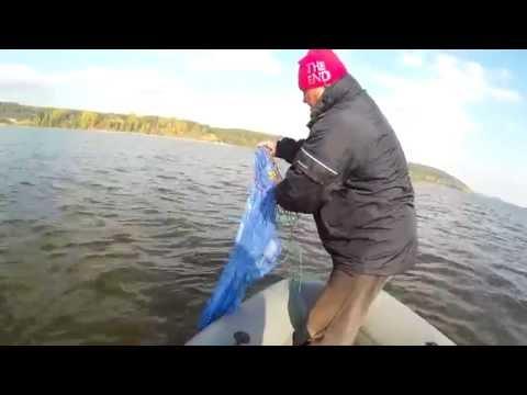 судак с лодки на тюльку