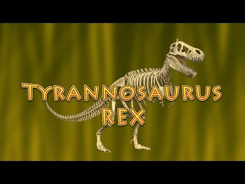 10 Facts About Tyrannosaurus Rex (T. Rex) - Dinosaurs for Kids!