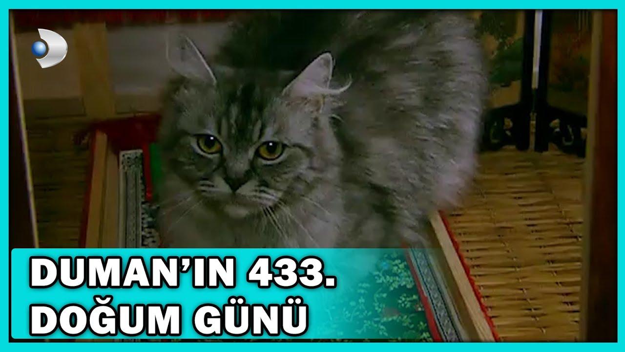 Duman'ın 433, Doğum Günü! - Acemi Cadı 49.Bölüm