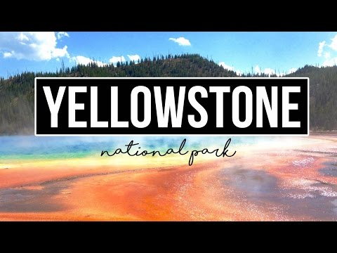 Exploring Yellowstone National Park - a Drivin' & Vibin' Travel Vlog