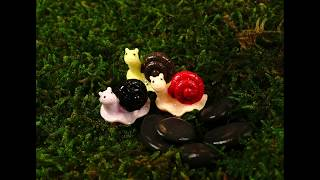 Play Snail (feat. Chloe Moriondo)