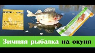 Зимняя рыбалка на окуня. Активный отдых ЗОЖ 10.12.2020