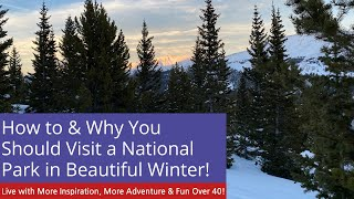 Snow Covered Mountains and Winter Beauty at RMNP #Short