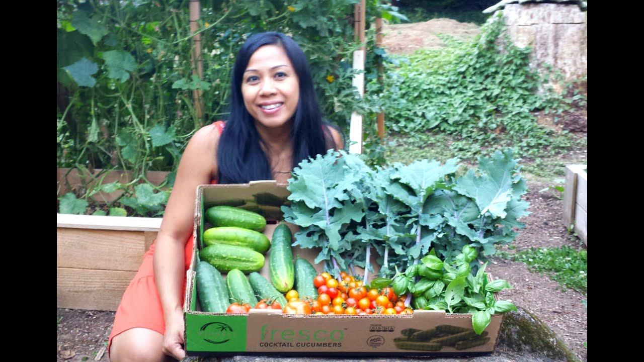Best Vegetable Gardening Book For Pacific Northwest Garden Ftempo