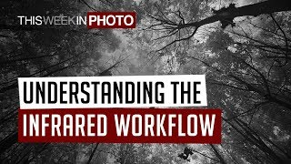 Understanding the Infrared Photography Workflow