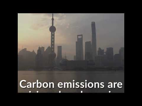 Carbon emissions are rising again