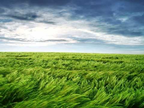 akeboshi wind (instrumental)