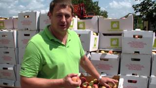 Яблоки сорт Гала(, 2013-08-06T14:23:50.000Z)
