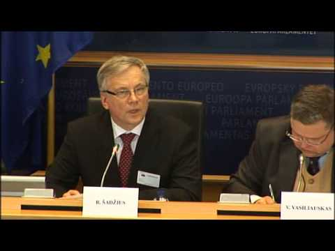 Lithuania LT Euro introdcution discussion in European Parliament - Europa