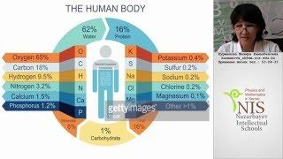 Химические вещества  в организме человека