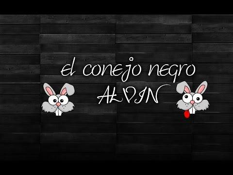 el conejo negro alvin mi conejo