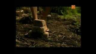 Los Aztecas. Construyendo un Imperio.avi