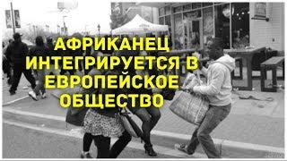 МИГРАНТЫ ЭТО ХОРОШО, УТВЕРЖДАЮТ СМИ ФРАНЦИИ. #DnoNews #НовостиДна