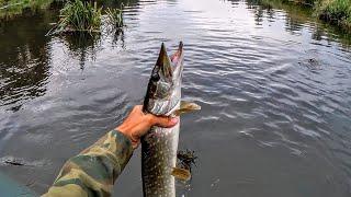 Эта приманка сделала рыбалку Рыбалка на щуку летом Удачная рыбалка Жор щуки