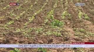 Областным фермерам на руку запрет на импортные продукты