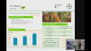 Портфолио гибридов кукурузы и рапса, результаты опытов - Онлайн Полевая Академия Байер 2017