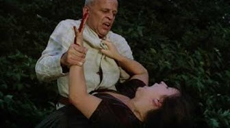 Woyzeck - Stabbing scene [sub eng]